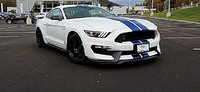 Picture of 2017 Ford Shelby GT350 Coupe, gallery_worthy