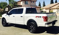 Picture of 2015 Ford F-150 Platinum SuperCrew 4WD, gallery_worthy