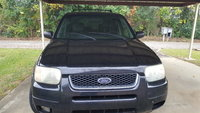 Picture of 2004 Ford Escape Limited 4WD, gallery_worthy