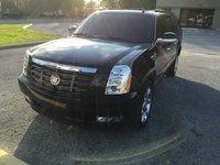 Picture of 2011 Cadillac Escalade ESV Premium 4WD, gallery_worthy