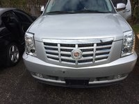 Picture of 2010 Cadillac Escalade 4WD, gallery_worthy