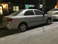 Picture of 2008 Toyota Corolla CE, gallery_worthy