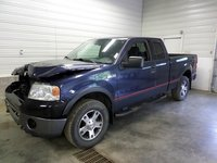 Picture of 2004 Ford F-150, exterior, gallery_worthy