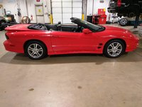 Picture of 1999 Pontiac Firebird Trans Am Convertible, exterior, gallery_worthy