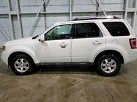 Picture of 2009 Ford Escape Limited, exterior, gallery_worthy