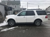 Picture of 2016 Ford Expedition XLT 4WD, exterior, gallery_worthy
