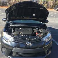 Picture of 2014 Toyota Corolla LE Eco, gallery_worthy