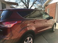 Picture of 2014 Ford Escape SE, gallery_worthy