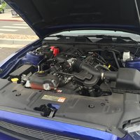 Picture of 2014 Ford Mustang V6 Premium, gallery_worthy