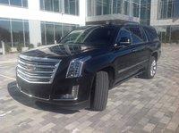 Picture of 2016 Cadillac Escalade ESV Platinum 4WD, exterior, gallery_worthy