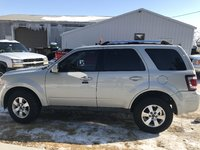 Picture of 2009 Ford Escape Limited V6 AWD, exterior, gallery_worthy