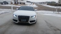 Picture of 2010 Audi S5 4.2 quattro Prestige Coupe AWD, gallery_worthy