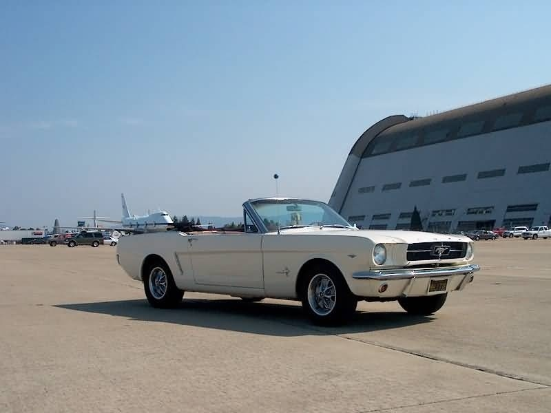 Ford Mustang Questions - How many 1964 1/2 Mustangs were made