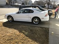 Picture of 1995 Ford Mustang SVT Cobra Coupe, gallery_worthy