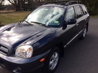 Picture of 2005 Hyundai Santa Fe GLS FWD, gallery_worthy
