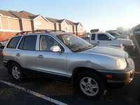 Picture of 2002 Hyundai Santa Fe 2.7L GLS FWD, gallery_worthy
