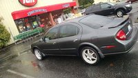 Picture of 2001 Nissan Maxima SE, gallery_worthy
