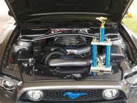 Picture of 2014 Ford Mustang GT, engine, gallery_worthy