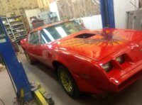 Picture of 1981 Pontiac Firebird Trans Am, exterior, gallery_worthy