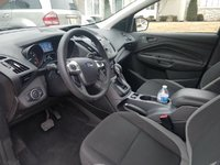 Picture of 2014 Ford Escape S, interior, gallery_worthy