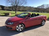 Picture of 2012 Volkswagen Eos Executive SULEV, gallery_worthy