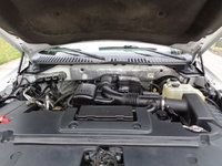 Picture of 2010 Ford Expedition XLT, engine, gallery_worthy