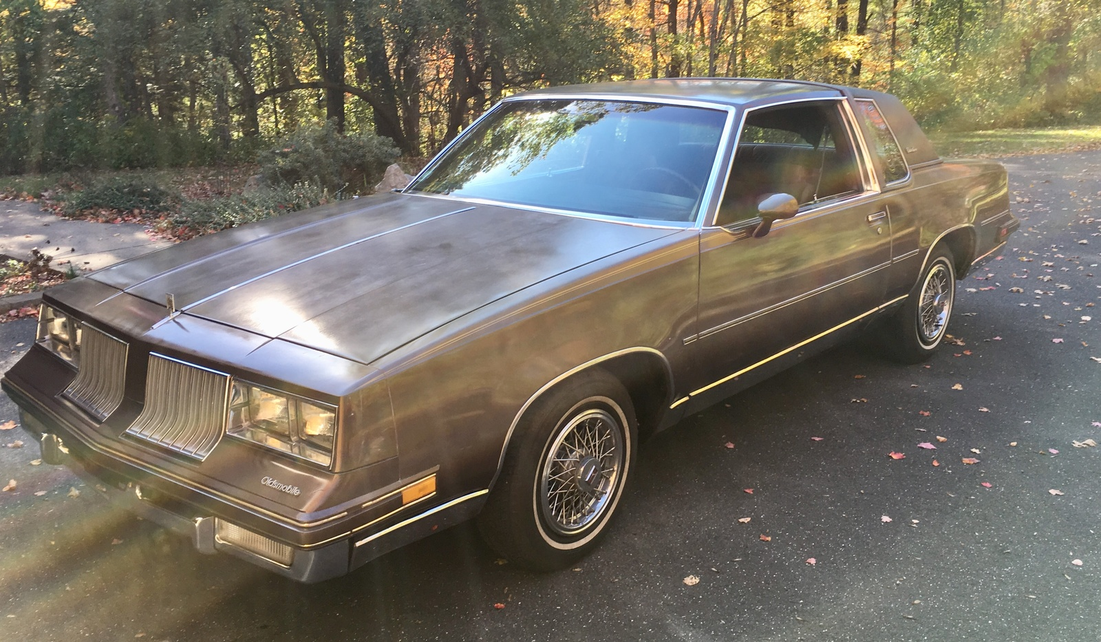 1984 Oldsmobile Cutlass Supreme - Overview - CarGurus