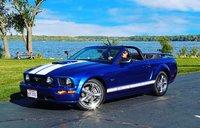 MustangLife129