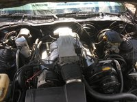 Picture of 1986 Pontiac Firebird Trans Am, gallery_worthy