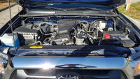 Picture of 2015 Toyota Tacoma Access Cab i4, engine, gallery_worthy