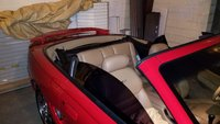 Picture of 1994 Ford Mustang SVT Cobra Convertible, exterior, interior, gallery_worthy
