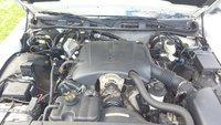 Picture of 1999 Ford Crown Victoria 4 Dr STD Sedan, engine, gallery_worthy