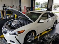 Picture of 2011 Acura TSX Sedan FWD with Technology Package, engine, gallery_worthy