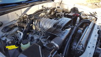 Picture of 2004 Toyota Sequoia SR5 4WD, engine, gallery_worthy