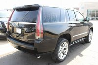 Picture of 2016 Cadillac Escalade Platinum 4WD, exterior, gallery_worthy