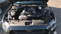 Picture of 2015 Ford Mustang GT, engine, gallery_worthy