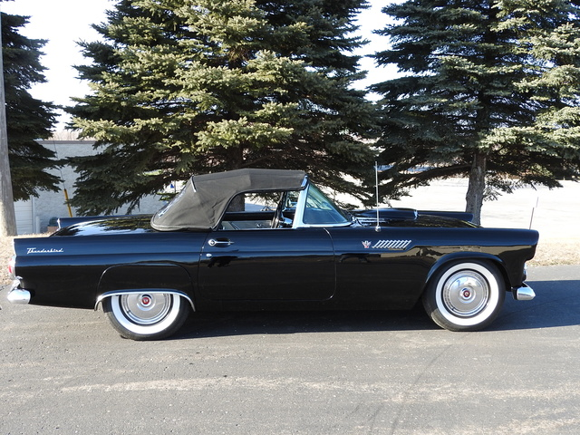 Picture of 1955 Ford Thunderbird, gallery_worthy