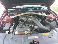 Picture of 2014 Ford Mustang V6 Premium Convertible, engine, gallery_worthy