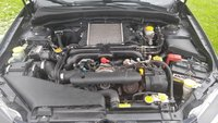 Picture of 2009 Subaru Impreza WRX Premium Package, engine, gallery_worthy