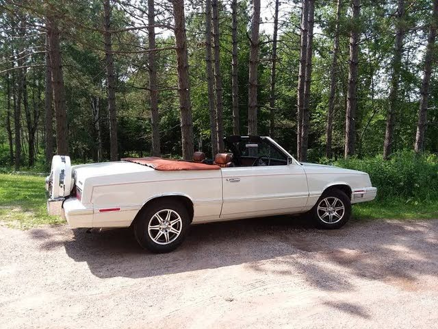 Picture of 1982 Chrysler Le Baron Medallion Convertible, exterior, gallery_worthy