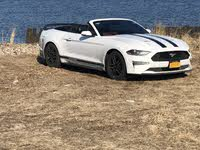 Picture of 2019 Ford Mustang EcoBoost Premium Convertible RWD, exterior, gallery_worthy