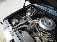 Picture of 1981 Ford Bronco STD 4WD, engine, gallery_worthy