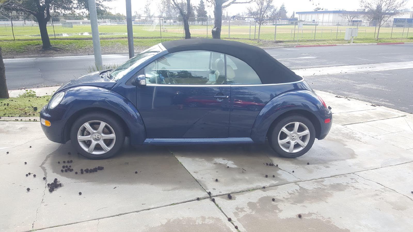 Volkswagen Beetle Questions - Vw Beetle
