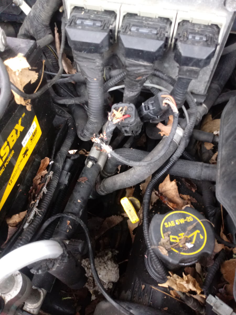 2003 Ford Expedition Fuel Pump Wiring