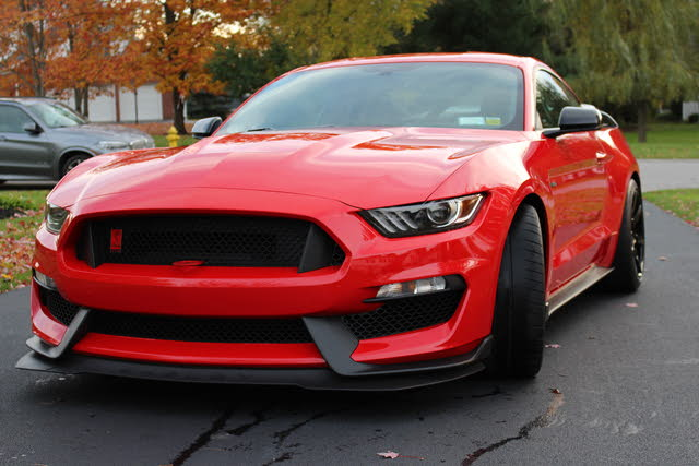Picture of 2016 Ford Mustang Shelby GT350R Fastback RWD, exterior, gallery_worthy