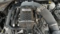 Picture of 2016 Ford Mustang GT Coupe RWD, engine, gallery_worthy