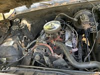 Picture of 1977 Chevrolet C/K 10 Custom Deluxe, engine, gallery_worthy