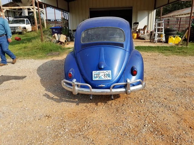 Picture of 1961 Volkswagen Beetle