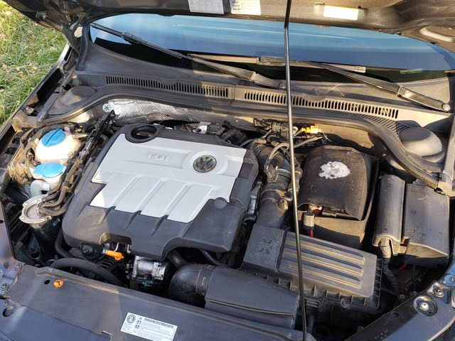 Picture of 2012 Volkswagen Jetta TDI, engine, gallery_worthy
