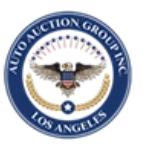 Auto Auction Group Inc logo